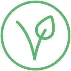 Olevm Derma di Pompeia - producto vegano